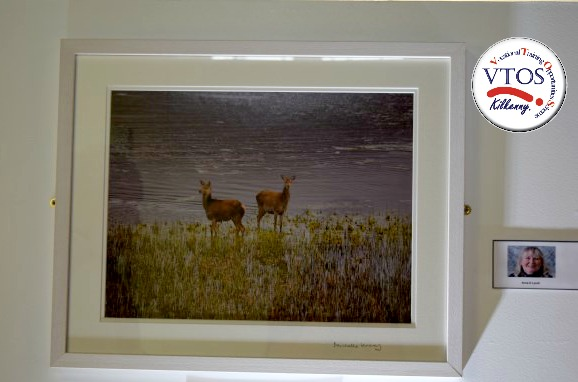 landscape and deer artwork at photography classes kilkenny.